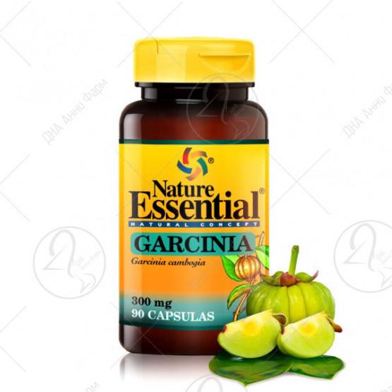 Гарсинија Камбоџа