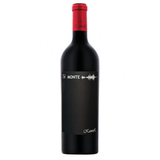Вино Монтепулчиано 750мл Камник