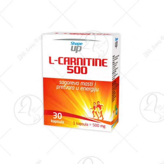 L–CARNITINE 500